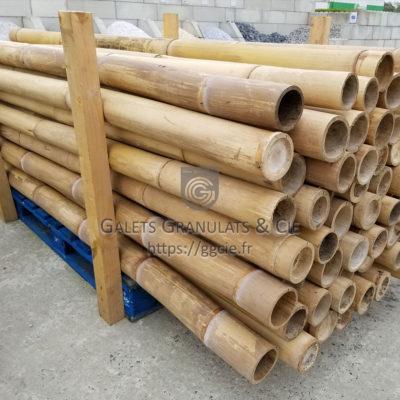 Piquet canne de bambou